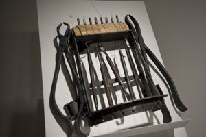 Image of Chest Harp 1