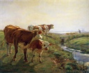 Image of Three Cows and a Calf