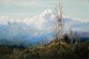 Image of Mt. McKinley with Trees