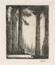 Image of Ex Libris: ~Western Forest~