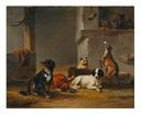 Image of Untitled [Six dogs]